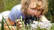 Wildflower Power: Photographer Kate Carter focuses on flora