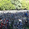 Missing From this Year's Bluegrass Festival: Hundreds of Bikes Hanging From Trees