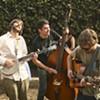 Hardly Strictly Bluegrass: Merle Haggard Rocks! (Slideshow)