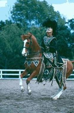 PETER  DASILVA - A Knight's Tale: A Carrousel performer.