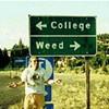 California Colleges Are Not Medical Marijuana-Friendly