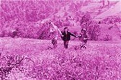 CHRIS  HELCERMANAS-BENGE - A Welcome Treat: Farahnaz Safari, Mohsen Ramezani, and Elham Sharim.