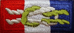 An Eagle Scout badge for post-Scouting adults. The knots represent something darker to those who wish to get out.