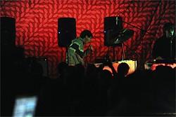 NIC COURY - Animal Collective: Big Sur-real show.