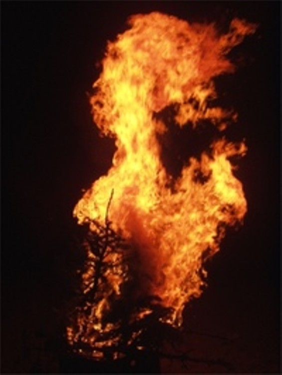 burning_christmas_tree_2_thumb.jpg