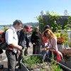 Bay Area Green Tours Explore Local, Sustainable Foods Deliciously