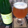Beer of the Week: Mikkeller Sally's Field