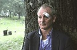 Bill Murray in Broken Flowers: Less Stripes - than a solid shade of gray.