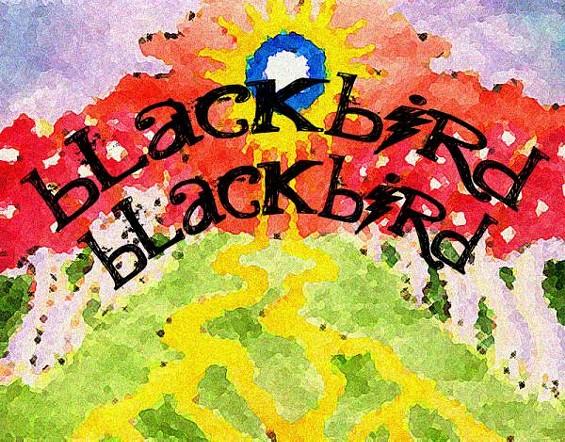 blackbird_blackbird_1_1.jpg