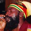 Reggae Rising Early Bird Tix Still Available