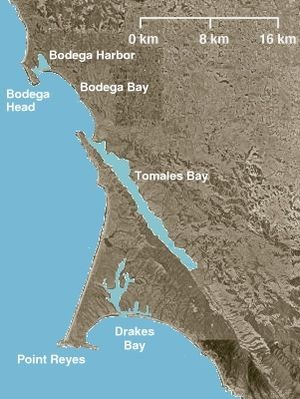 Body of sailor possibly located in Bodega Bay