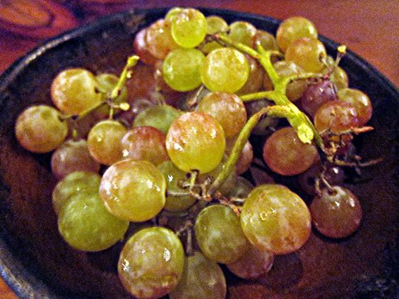 Bronx grapes at Camino. All they needed? A shirtless man. - CARINA OST