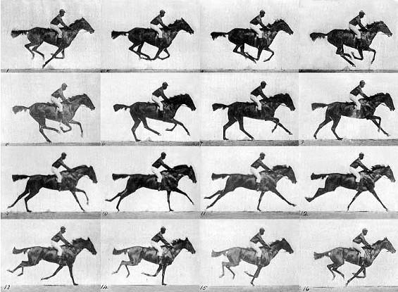 muybridge_race_horse_gallop.jpg