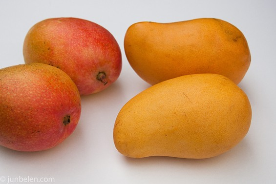 Champagne mangoes (right), pictured with specimens of the common Kent variety. - JUN BELEN