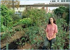City Slicker Farms' Willow Rosenthal. - JULIA PLASENCIA