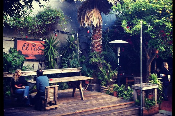 Clearly El Rio's leafy paradise tops the list. - ALEE KARIM