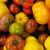 Coffee Bar Hosts Five-Course Heirloom Tomato Popup Dinner