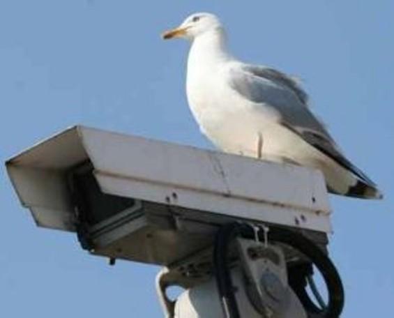 300px_security_camera_sf.jpg