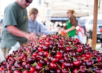 Despite the Fog, Fort Mason Farmers' Market Off to a Warm Start