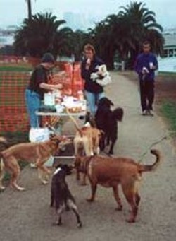 PETER  BYRNE - Dolores Park Dogs group conducts outreach.
