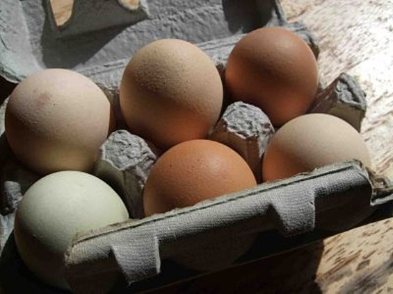 Eggs from pastured chickens are usually available Tuesdays at Omnivore Books in Noe Valley, $8 per dozen. Owner Celia Sack collects them from a neighbor in the West Marin town of Tomales. - ARNOLD INUYAKE/FLICKR