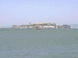 Escape From Alcatraz Triathlon.