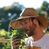Cannabis Sustained Agriculture: A Startup Is Banking on Cannabis Consumers Caring Where Their Weed Comes From