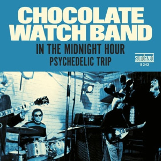 chocolatewatchband_rsd.jpg
