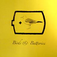 birdsbatt.png
