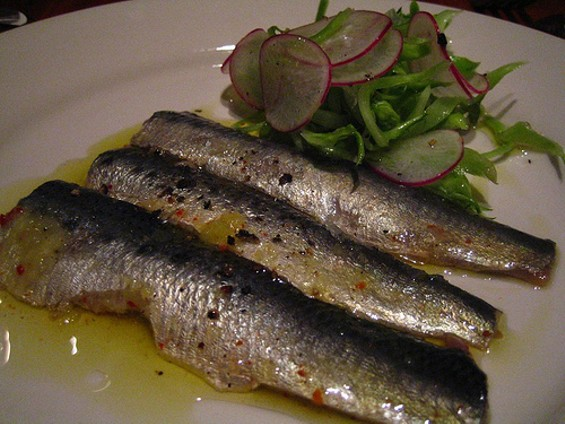IN PRAISE OF SARDINES/FLICKR