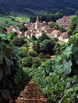France's Burgundy Region. Ooh La La.