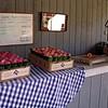 Fresh Peach Tasting and Preserves Swap