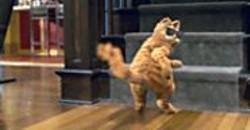 RHYTHM & HUES - Garfield: The Movie.