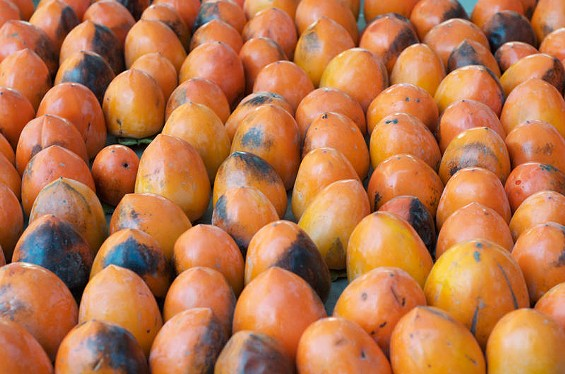 Hachiya persimmons ― the kind we're drying into hoshigaki. - SEAN TIMBERLAKE