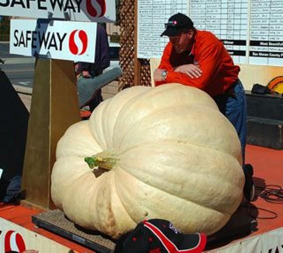pumpkin_contest.jpg