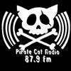 Hear SFoodie's Tamara Palmer on the Radio Tomorrow