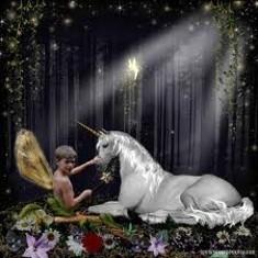 enchantedforest_thumb_235x235.jpeg