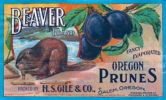 Hmmm -- what would happen if beavers ate prunes, too?