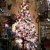Holiday Shopping: Miracle on Polk Street