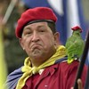 Join Hugo Chavez' Twitter Army!
