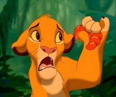 If Simba can eat insects, couldn't you too?