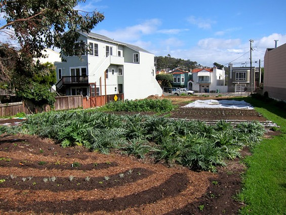 If tomorrow's amended ordinance passes, it'll mean small urban farms like Little City Gardens will be able to sell produce without securing zoning exemptions. - LITTLE CITY GARDENS