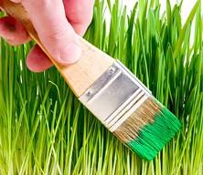 greenwashing.jpg