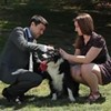 Did You Lose Your Dog? Now There's an App That'll Reunite Man and His Best Friend