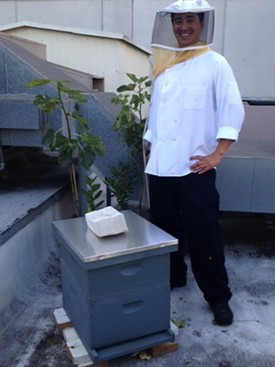 Jardiniere chef de cuisine Dylan Montano with the new bees.