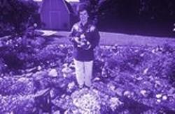 PAUL  TRAPANI - Jean Fenstermaker in Gnomeman's Land.