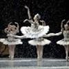 <i>La Danse: The Paris Opera Ballet</i>