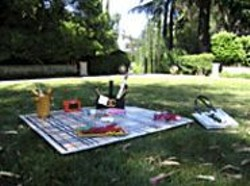 "Libby Black's faux-bling picnic at ""Caught Up in the - Moment."""