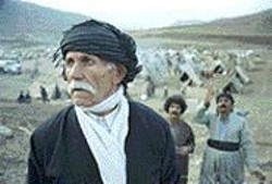 Marooned's marvelous actors, including - Shahab Ebrahimi as the elderly but still vibrant Mirzah, - are all nonprofessionals.