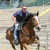Charlie, Veteran Police Horse, Dies 10 Days Before Retirement